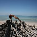 Beach Ngirl by Lucky Cole