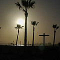 Beach Of The Palm Tree Crosses by Michael Ziegler
