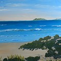 Beach On The North Coast Of Nsw  by Pamela  Meredith