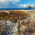 Beach Path 2 by Karen Lewis