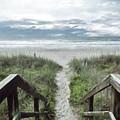 Beach Path by Kelley Freel-Ebner
