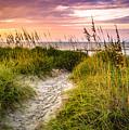 Beach Path Sunrise by David Smith