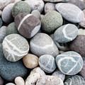 Beach Pebbles Close Up by Elena Elisseeva