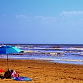 Beach Picnic by Robert Cox