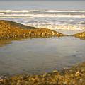 Beach Puddle by Mandy Shupp