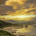 Beach Reflections by Don Schwartz