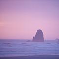 Beach Rocks by Curtis Gibson