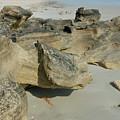 Beach Rocks by David Campione