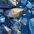 Beach Rocks by Melissa Hicks