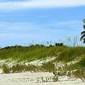 Beach Solitude by Paul Wilford