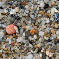 Beach Stones by Linda Sannuti