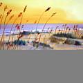 Beach Sunrise by Phil Burton