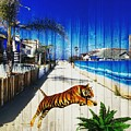 Beach Tiger  by Meysam Turner