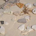 Beach Treasures 2 by Melissa Lane
