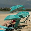 Beach Umbrellas In Teal by E Faithe Lester