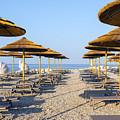 Beach Umbrellas  by Svetlana Sewell