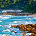 Beach Wedding by Paul Doody