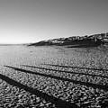Beach With Shadows by Sascha Meyer