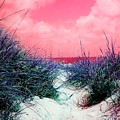 Beach Worx by Meghann Brunney
