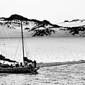 Beached At Coorong Bw by Tim Richards