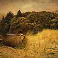 Beached Boat by Don Schwartz