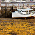 Beached Boat During Low Tide In Nova Scotia Canada by Nick Jene