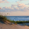Beaches Of Outer Banks Nc by Laurinda Bowling