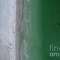 Beachin by Patrick Donovan