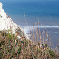 Beachy Head Sussex by Heather Lennox