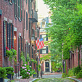 Beacon Hill by Susan Cole Kelly