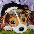 Beagle Pup by Sonya Delaney