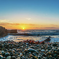 Bean Hollow State Beach, Pebble Beach by Javier Flores