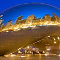 Bean Reflections by Donald Schwartz