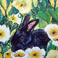 Bean The Magical Rabbit -pet Portrait by Ashleigh Dyan Bayer