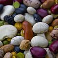 Beans Of Many Colors by LeeAnn McLaneGoetz McLaneGoetzStudioLLCcom