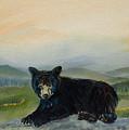 Bear Alone On Blue Ridge Mountain by Jan Dappen