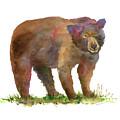 Bear In Mind by Amy Kirkpatrick