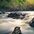 Bear Creek  by Ryan Tanguilan