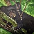 Bear Cub by Dennis Wilson