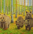 Bear Family by Veikko Suikkanen