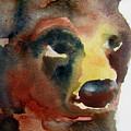 Bear by James Huntley