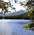 Bear Lake Rmnp by Nava Thompson