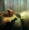 Bear Mountain Fantasy by David Dehner