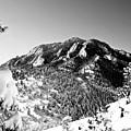 Bear Peak by Karl Manteuffel