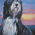 Bearded Collie Sunset by Lee Ann Shepard