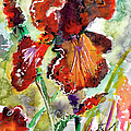 Bearded Iris Brown Sally Watercolor by Ginette Callaway