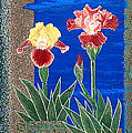 Bearded Irises Cheerful Fine Art Print Giclee High Quality Exceptional Color by Baslee Troutman