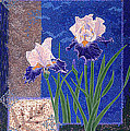 Bearded Irises Fine Art Print Giclee Ladybug Path by Baslee Troutman
