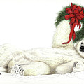 Beary Christmas by Lorrisa Dussault