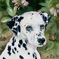 Beaudiddeley by Eileen Hale